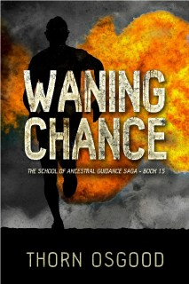 tosgood_waningchance_2_ebookfnl2_450x675